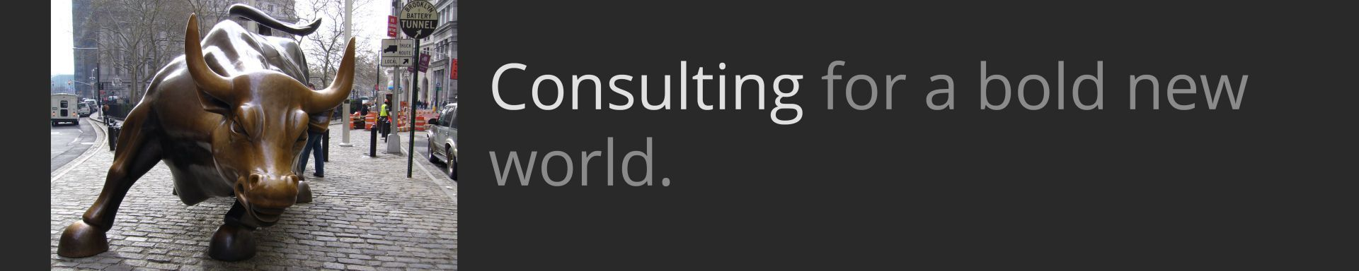 HeaderImage_consulting_new_world